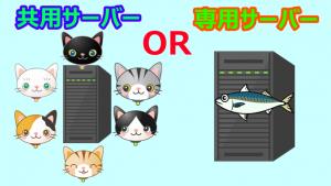 ブログ初心者は共用サーバーと専用サーバーどちらを選ぶべき